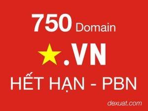 750domainvn-het-han