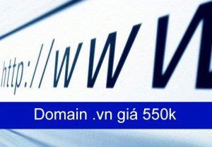 Domain .VN giá 550k